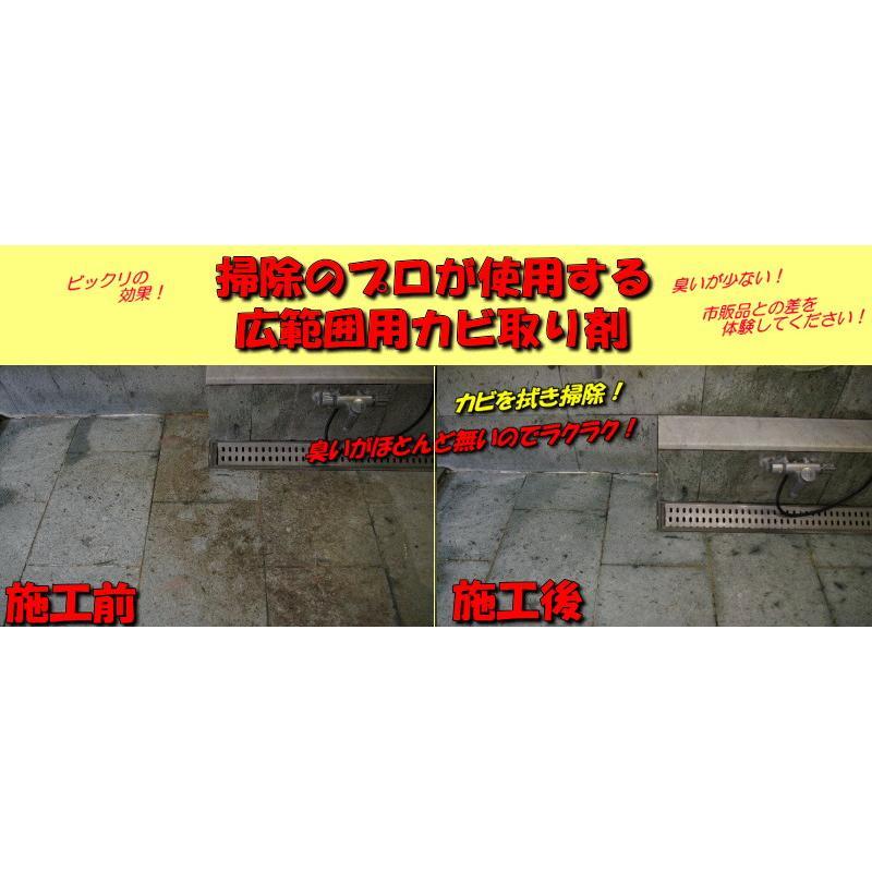 日本鈴木原裝進口黑黴剋星-矽立清除霉凝膠(100g)