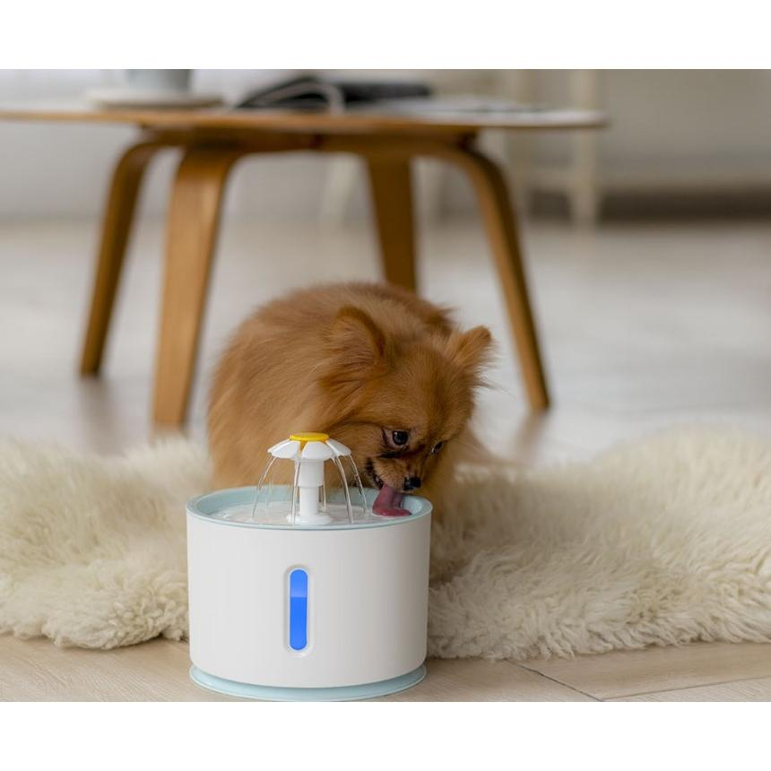 USB夜光智能LED寵物飲水機(無水停機)