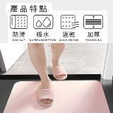 獨家代理日本PPT升級版超吸濕硅藻土地墊(60*39)裸片